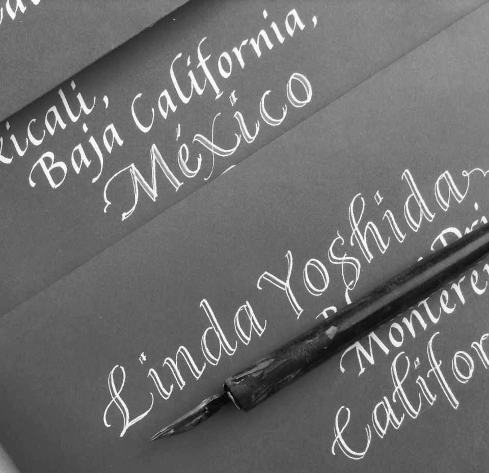 italic-calligraphy-portfolio
