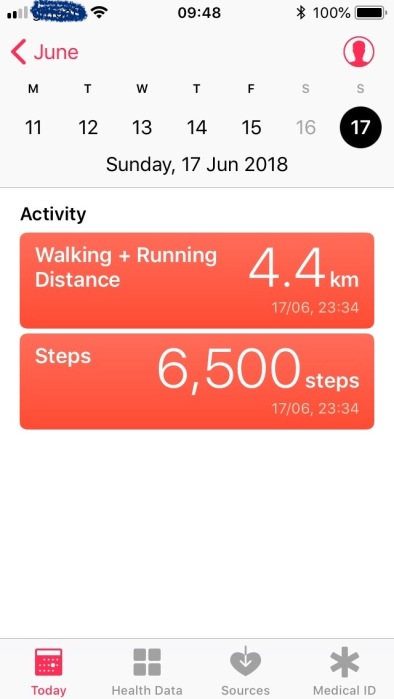 every-day-walk