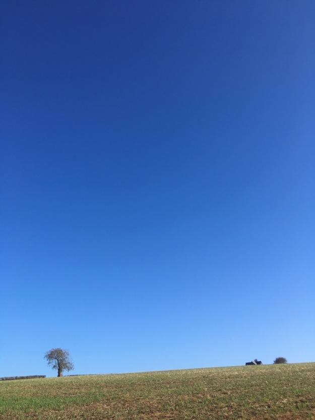 Devon-sky-2018