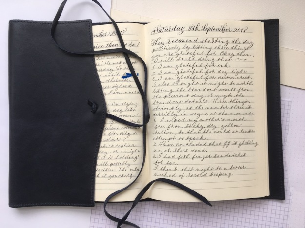 handwritten-journal-of-no-real-interest-uk